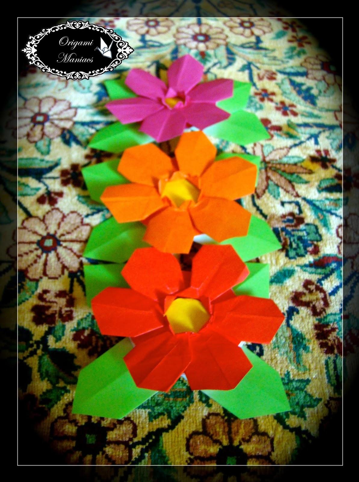 Origami Maniacs Flor De Origami De 6 Petalos