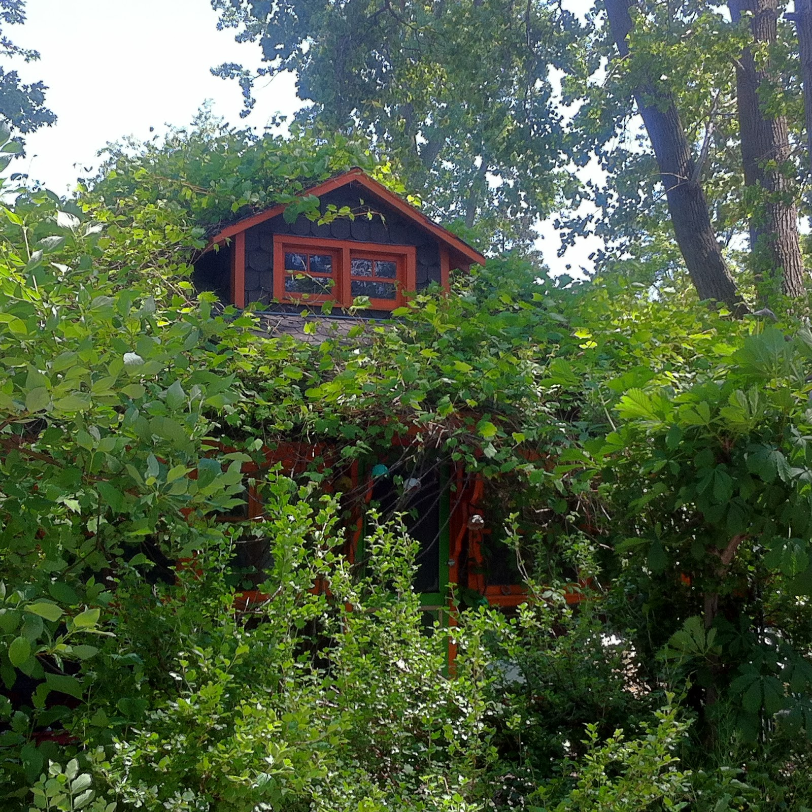 essay eh toronto islands a perfect place on a summer s day life is quiet here motor vehicles are scarce but dogs and bicycles park outside the outdoor cafe one side faces lake ontario the other overlooks