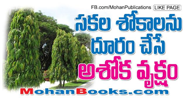 అశోక వృక్షం |  Ashoka tree | Mohanpublications | Granthanidhi | Bhakthipustakalu Ashoka Tree Ashoka Vanam Ashoka Vanam Sita Lanka India Srilanka Ashoka Chettu Mahaveer Sita Goddess Sita