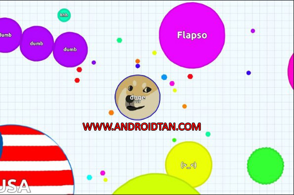 Agar Io Mod Apk Unlimited Money