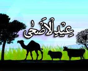Lebaran-Haji-Hikmah-Manfaat-dan-Keutamaan-Qurban-Idul-Adha
