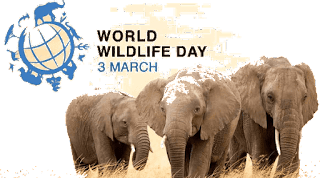 World Wildlife Day Observed on 3rd March