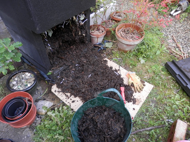 My Hotbin composter.  A review of my Hotbin composter by UK garden and eco blogger secondhandsusie.blogspot.com #hotbin #composter #hotbincomposter #gardening #ukgardener #permaculturegarden #ukpermaculturegarden