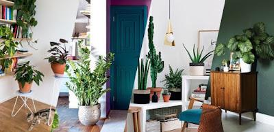 Ideia para ter um jardim em casa