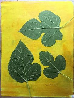 Solarfast prints_Sue Reno_ Image 14