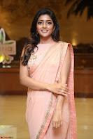 Eesha Rebba in beautiful peach saree at Darshakudu pre release ~  Exclusive Celebrities Galleries 076.JPG