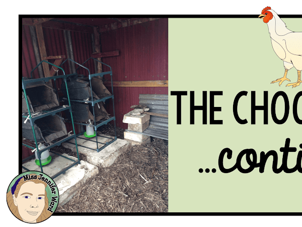 The Chook Shed Continues....