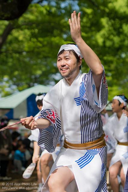 紅連、小金井子供フェスタでの阿波踊り、男踊り正悟さん