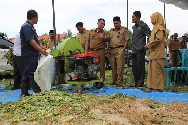 Pemkab Lamsel Kucurkan 64 Miliar Untuk Kecamatan Palas