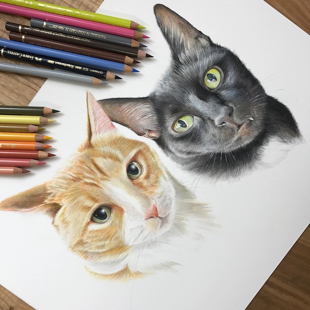 10-Cat-Paul-Miller-Wildlife-and-Domestic-Animal-Drawings-www-designstack-co
