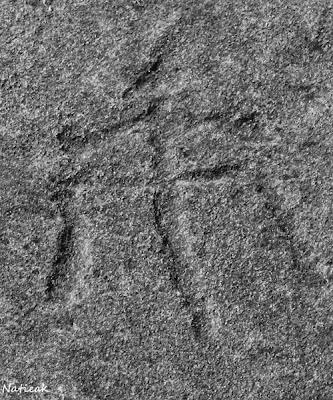 gravures  rupestres au Parc Archéologique des Lozes
