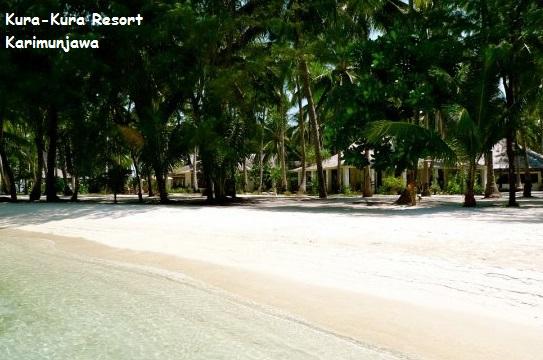 pantai putih kura kura resort karimunjawa