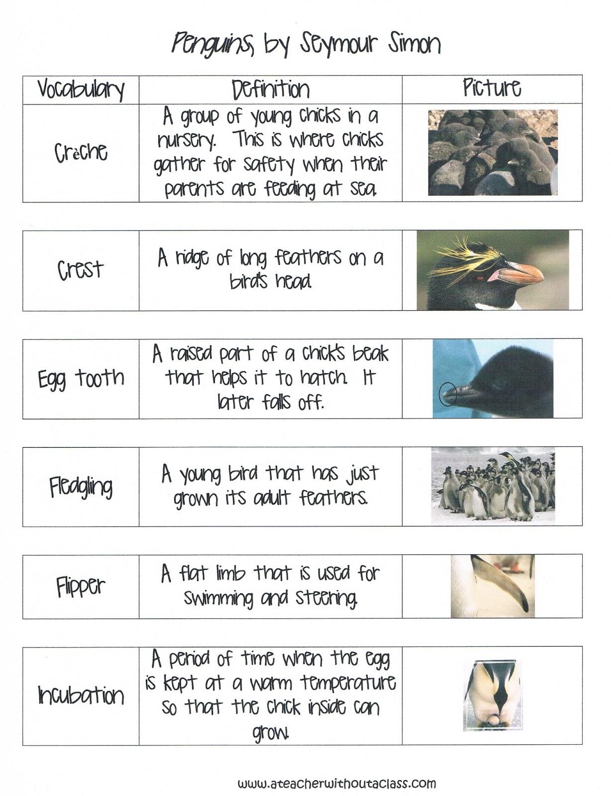 Kindergarten Vocabulary Words And Definitions