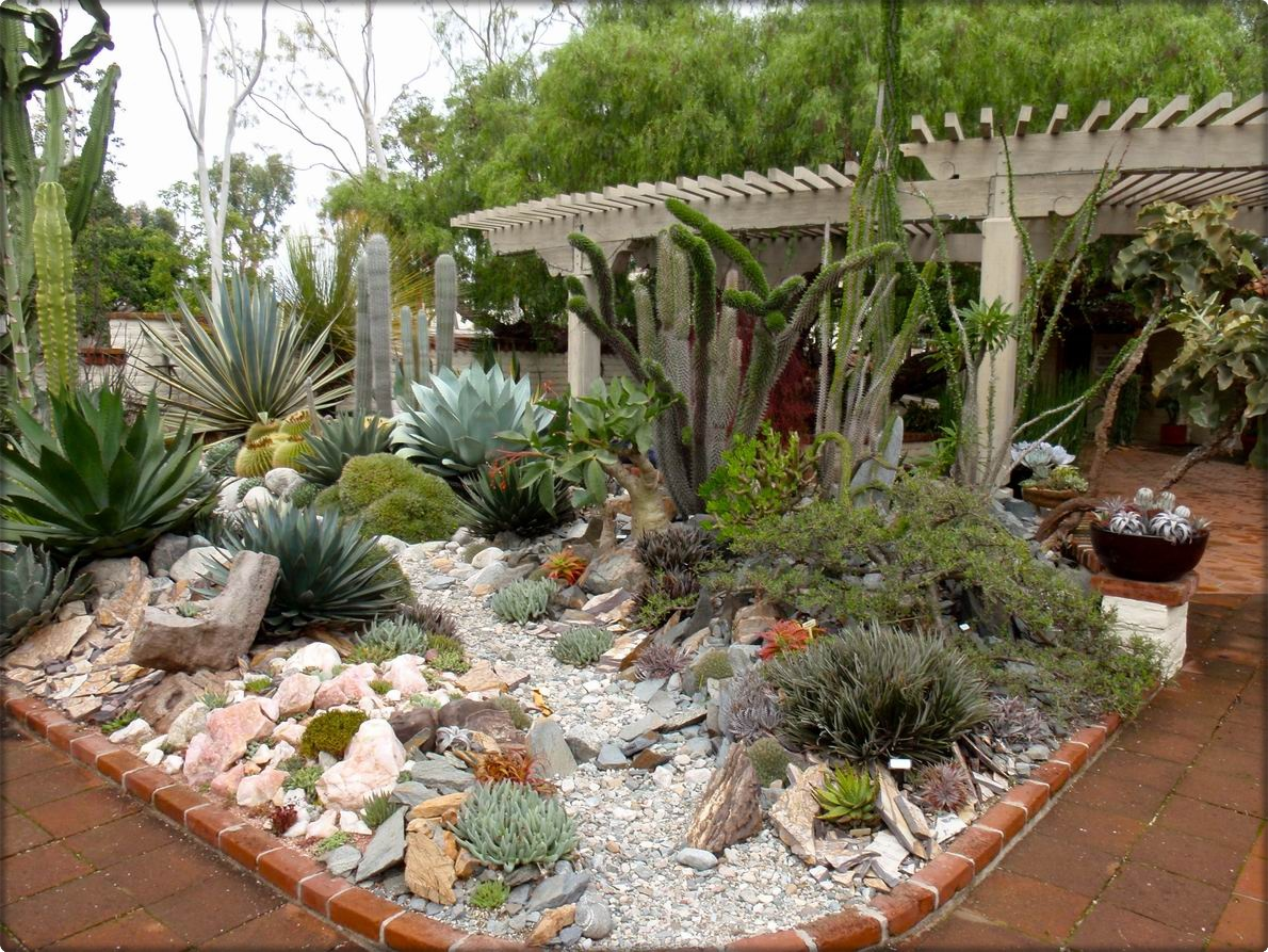 Landscaping With Succulents Ideas : Garden interactive succulents design ideas with visible white