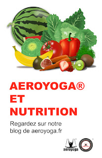 aeroyoga, nutrition, maigrir, air yoga, yoga, pilates, fitness, mise en forma, fly, flying, apesanteur, gravity, sante, wellness, anti age, stage, teacher training