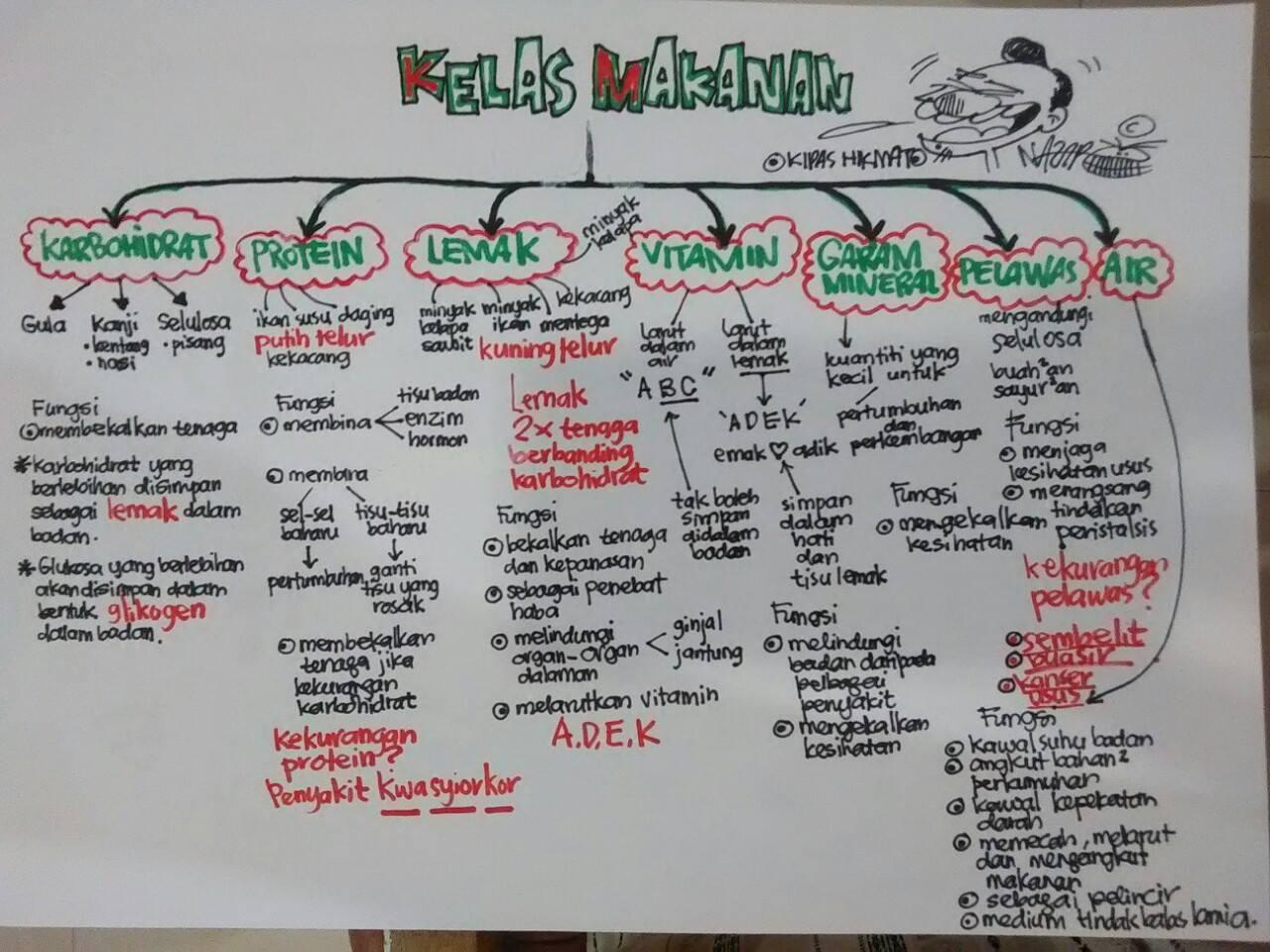 Formula Hikmat Enzim Dalam Sistem Pencernaan Manusia.