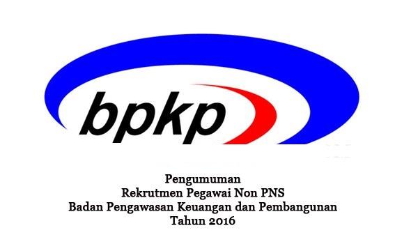 BADAN PENGAWAS KUANGAN DAN PEMBANGUNAN : PROGRAMMER SENIOR - NON PNS, INDONESIA