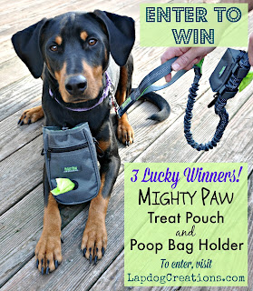 enter to win mighty paw dog accessories