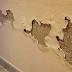 طريقه مذهله للقضاء على رطوبه الجدران نهائيأ