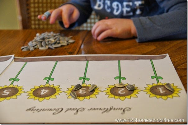 http://www.123homeschool4me.com/2015/08/sunflower-seed-counting-activity.html