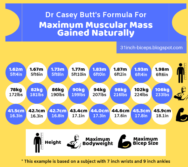 Maximum Muscular Mass Gained Naturally