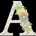 Alfabeto de Hadas con Diferentes Texturas y Flores.