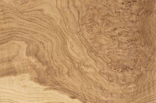 OAK BURL VENEER|OAK BURR VENEER|OAK VENEER |Oak Burl Wood Veneer