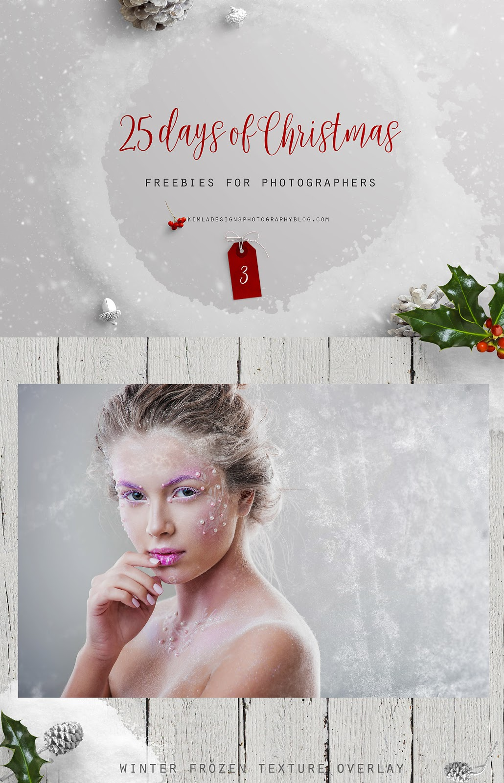 Day 3 of 25 days of Christmas Freebies for Photographers