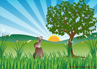 BLonely Rabbit in The Hill Plant Tree Scenery