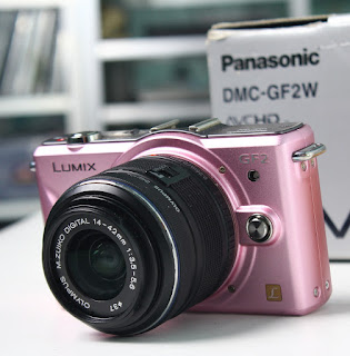 Mirrorless Panasonic DMC-GF2W