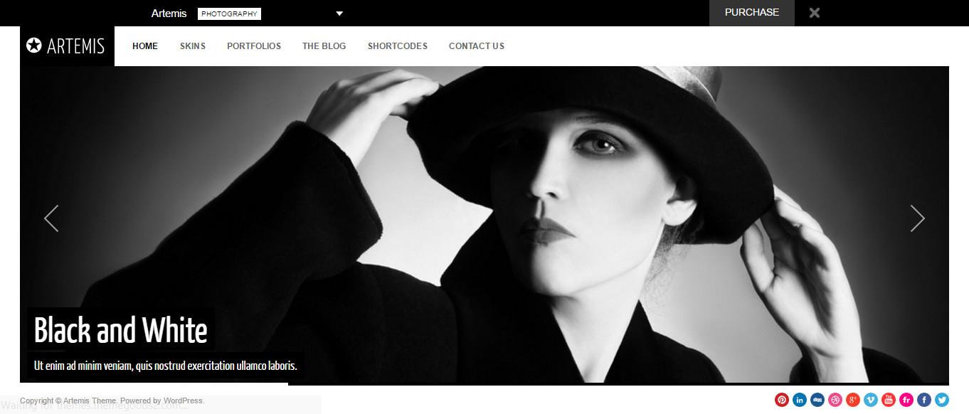 wordpress-photography-Gallery-Theme