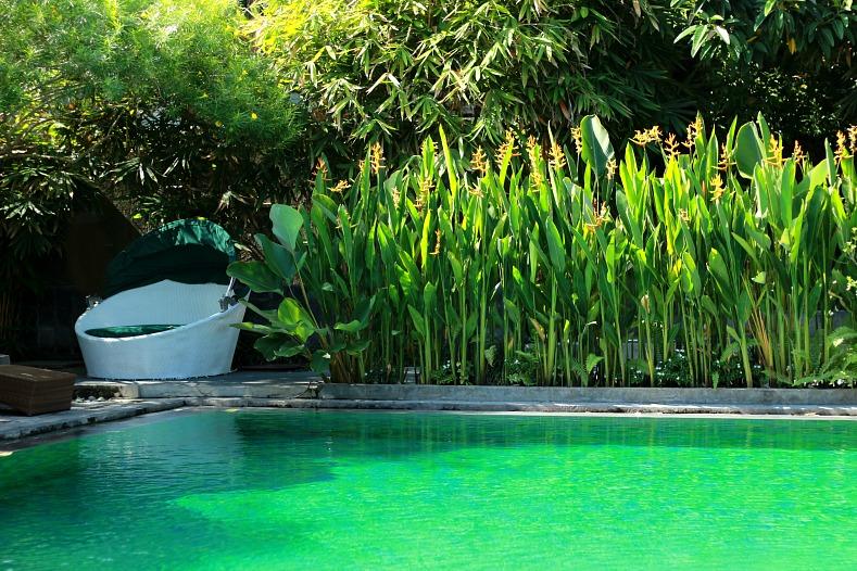 Pool, Aqua Octaviana Bali Villas, bali