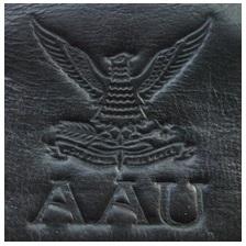 Gambar Emboss Jaket Kulit Angkatan Udara
