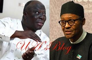 Arrest Me, I Still Won't Recognise Buhari's Victory, Afenifere Leader Dares Presidency