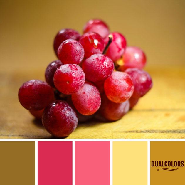 color_paleta_127