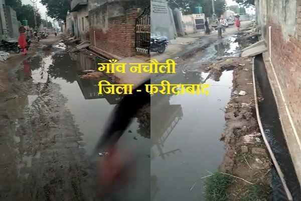 nachauli-village-no-saaf-safai-by-sarpanch-mla-and-mp-news-hindi