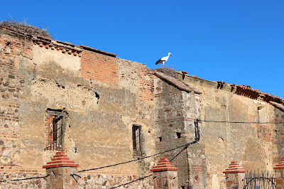 Convento de las Agustinas. Puebla de Alcocer