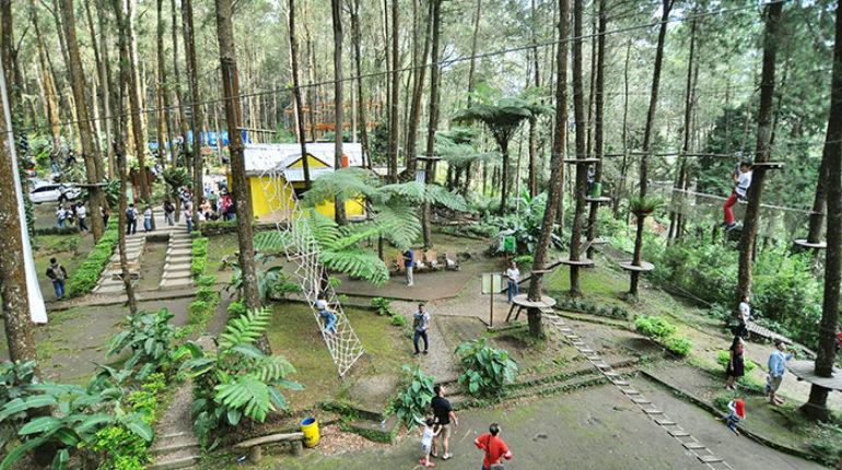Lokasi Dan Rute Kopeng Treetop Adventure Semarang Jawa Tengah