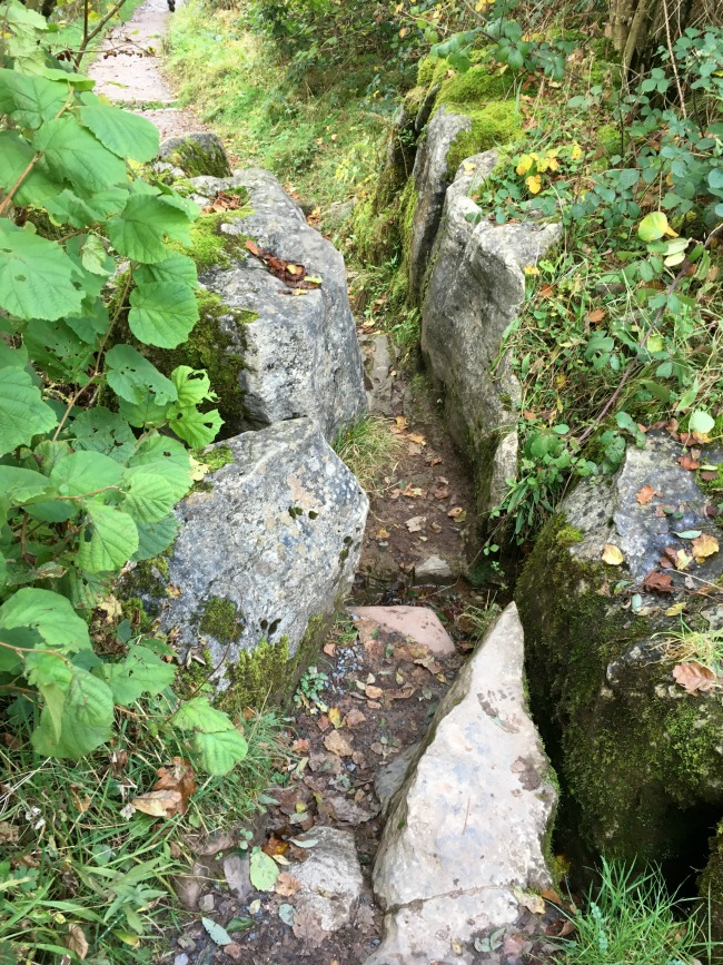 path-squeezing-between-two-large-rocks