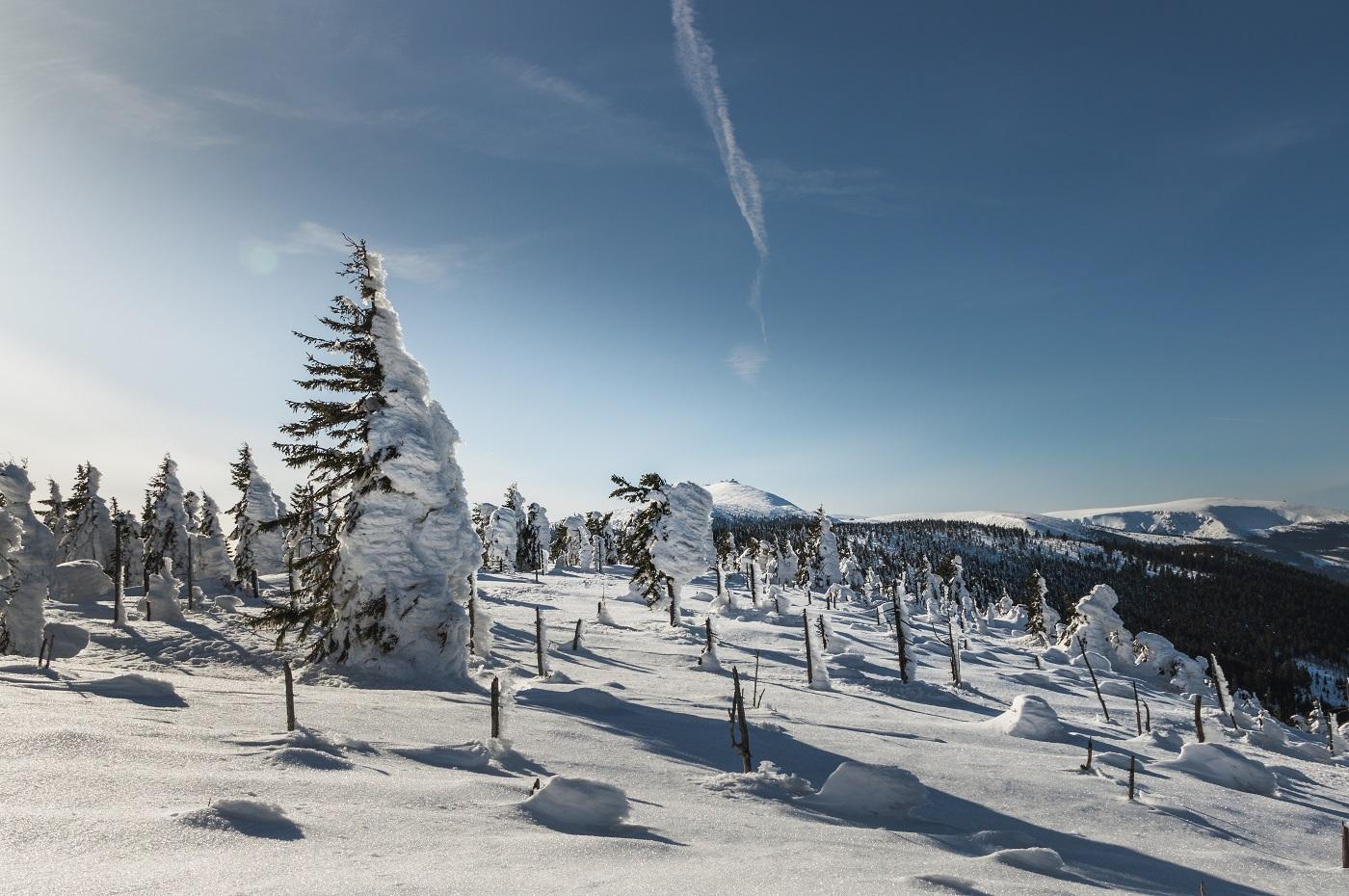 Zimowe szlaki w Sudetach