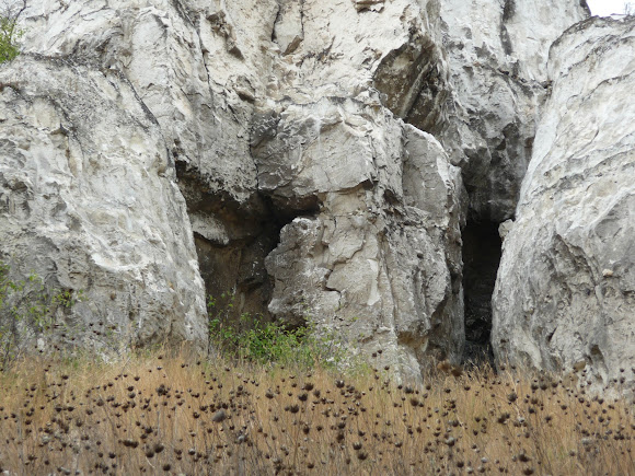 Белокузьминовские скалы. Ландшафтный природный парк «Краматорский». Памятник природы