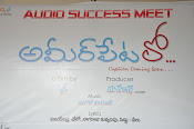 Ameerpetlo audio success meet photos-thumbnail-1