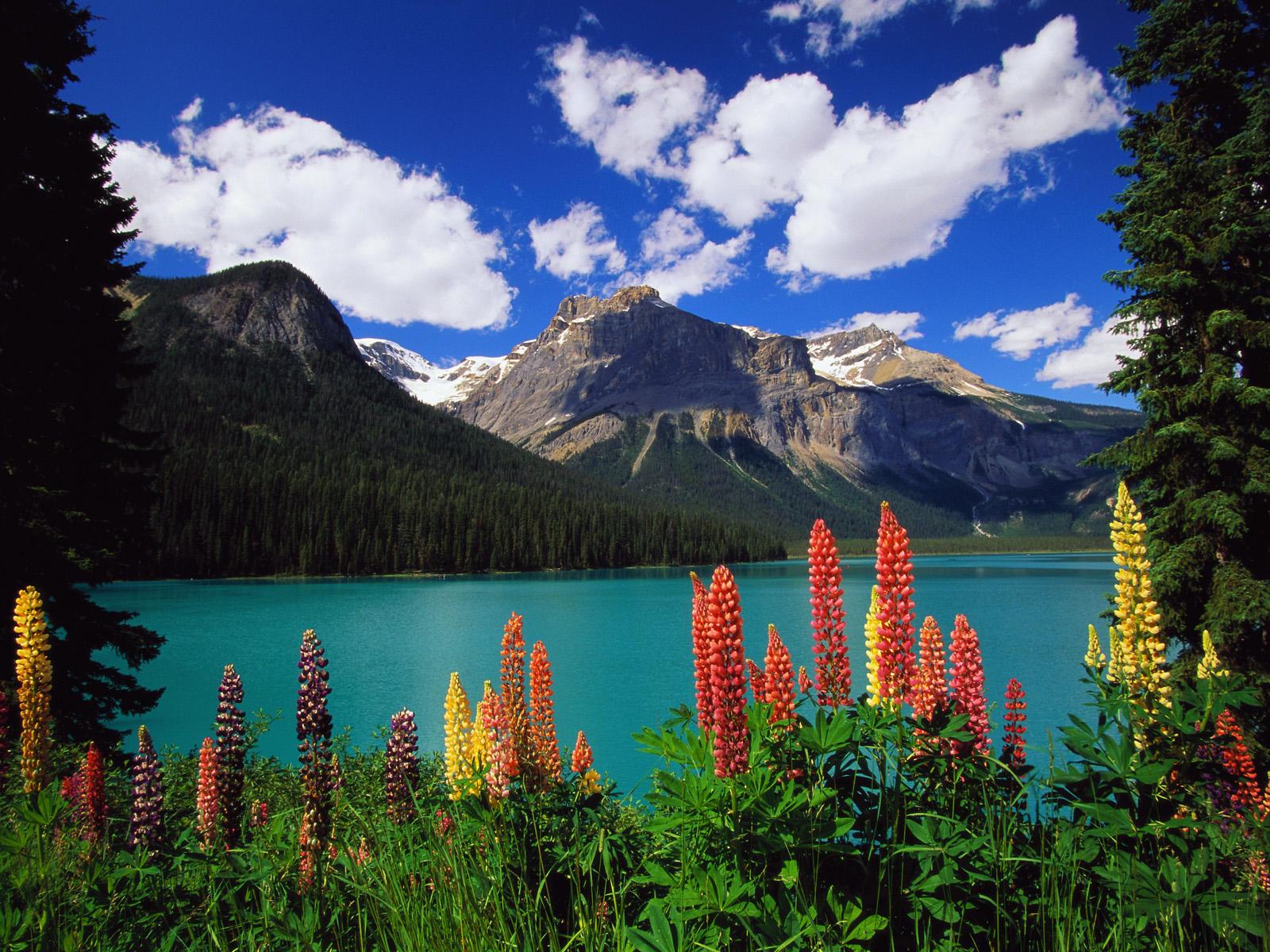 Yoho National Park - Field, BC, Canada - Yelp