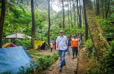 Tempat Camping Hutan Pinus di Bogor