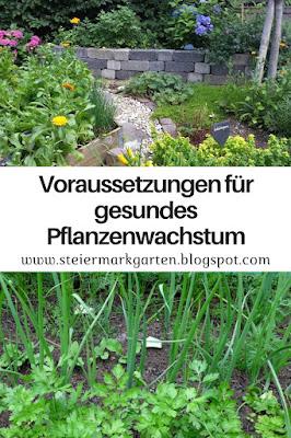 Voraussetzungen-für-gesundes-Pflanzenwachstum-Pin-Steiermarkgarten