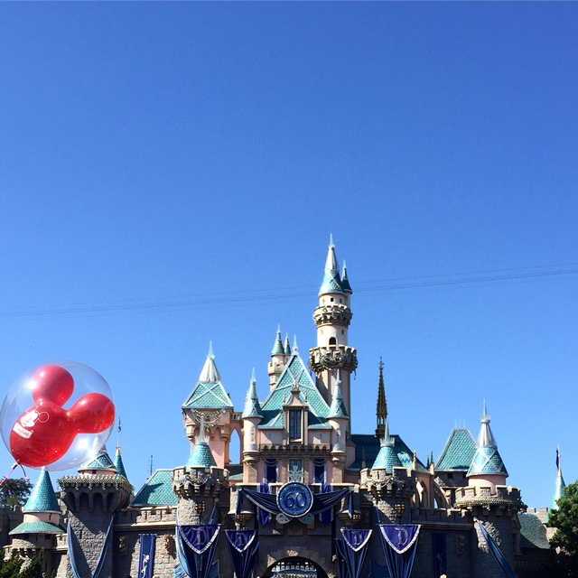 Summer at Disneyland