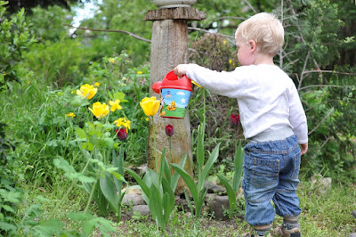 Eight hints To Get Your children enjoy home Gardening