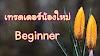 สอน Forex เบื้องต้นและแนวคิดการเทรด Forex สำหรับเทรดเดอร์น้องใหม่ Beginner