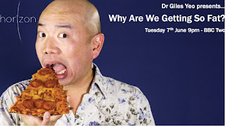 Why Are We Getting So Fat? | Watch online BBC documentaries