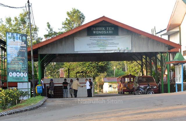 Pabrik Teh Wonosari Lawang, Malang